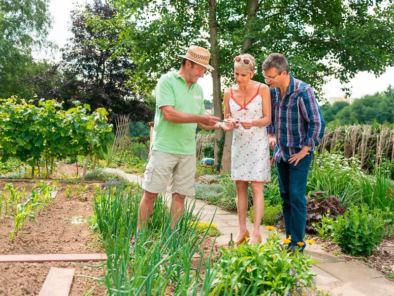 Private Gartenparadise 4