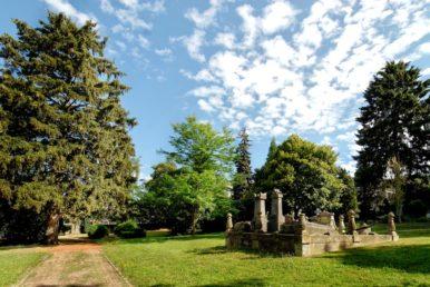 Öffentliche Gärten 3